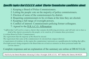 Summary of questions posed to Charter Commission candidates.
